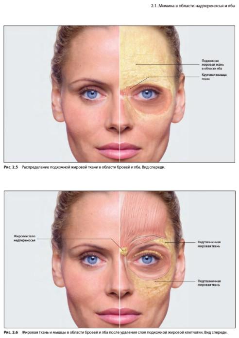 Герхард Заттлер - Эстетическая коррекция верхней трети лица. Скачать бесплатно
